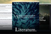 Literatum Theme Review